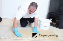Carpet Dry Cleaning Company Glen Waverley 3150