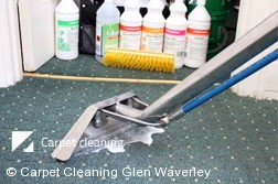 Professional Carpet Cleaners Glen Waverley