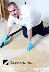 Professional carpet Cleaning Services in Glen Waverley