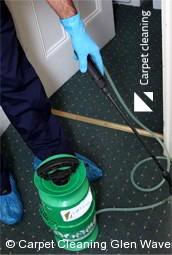 Professional Carpet Cleaners Glen Waverley 3150